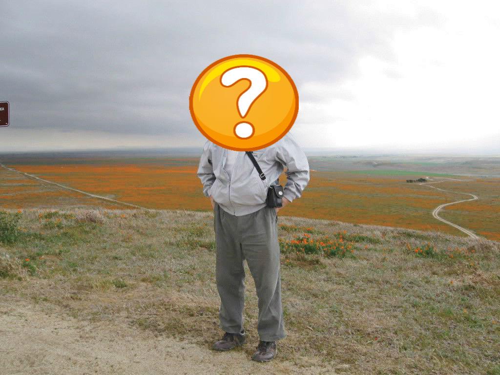 Satoshi_Nakamoto_Bitcoin_Creator_question